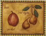 Pears Bosc Red Anjou Seckel