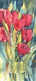 Red Hot Tulips