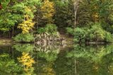Autumn Forest Reflections Lake Side