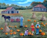 The Pumpkin Patch 2