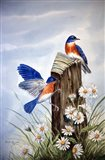 Bluebirds With Daisies 2