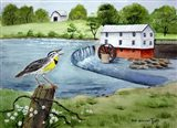 Meadowlark and Murray's Mill