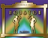 Houston Prohibition