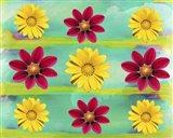 Floral Design G