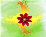 Floral Design K