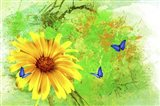 Yellow Flower And Butterflies