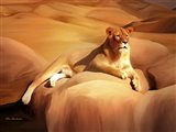 Lioness On A Rock 2