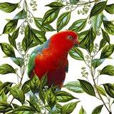 Bird Collection 18