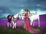 The Princess And Unicorns
