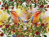 Twin Birds K7