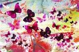 Butterfly Art A7