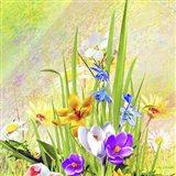 Garden Of Flowers M4