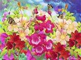 Garden Of Flowers M8