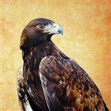 Eagle King