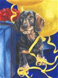 Dachsund With Yellow Ribbons And Balloons