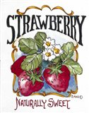 Naturally Sweet Strawberry-Seed Packet
