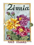 Mixed Colors Zinnia-Seed Packet