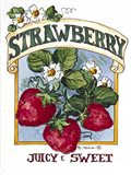 Juicy and Sweet Strawberry-Seed Packet