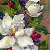 Magnolia Squsre 1