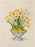 Blue and White Porcelain Daffodils