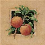 Peach Square