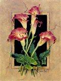 Framed Callas