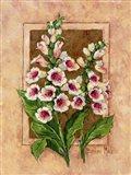 Foxglove Fresco