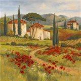 Tuscan Dream I
