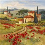 Tuscan Dream II