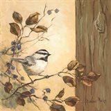 Chickadee Square I