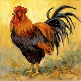 Rooster Rules II