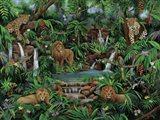 Peaceful Jungle