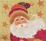 Christama Hat Santa