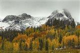 A Rocky Mountain Autumn
