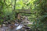 Alum Cave Trail Bridge