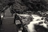 chimney tops bridge  BW