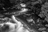 little pigeon river2BW