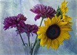 Mums & Sunflowers