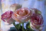 Romance 3
