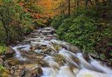 Fall Rapids 2