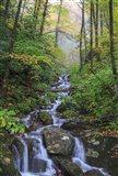 Small Waterfalls 3