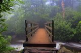Wooden Bridge 3