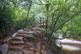 Stone Steps To A Bridge