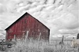 Painter Barn BW