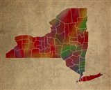 NY Colorful Counties