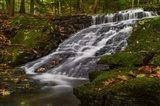 Abbey Pond Cascades