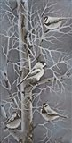 Chickadee Quartet