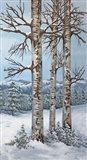 Aspen Trio Winter