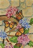 Malachite Butterflies