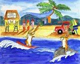 Corgi Surfers Club
